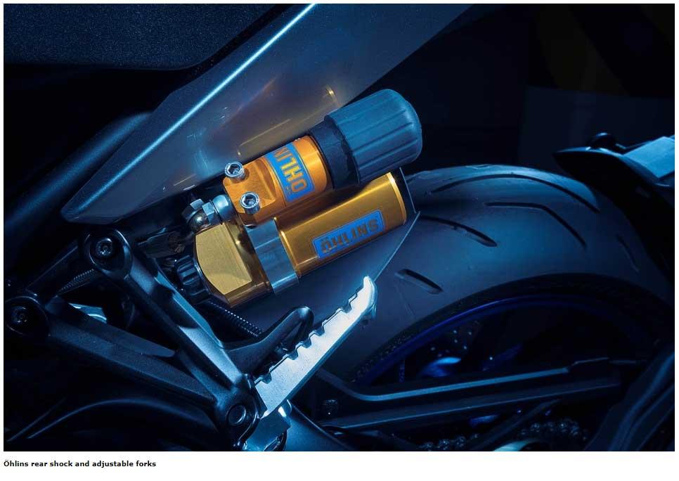 Öhlins rear shock and adjustable forks